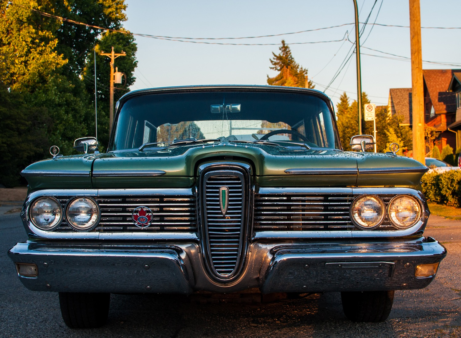 1959 Ford Edsel Front Grill